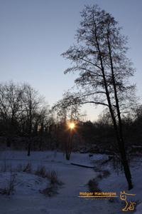 Sonnenstrahlen Holger Hackenjos Naturfotografie